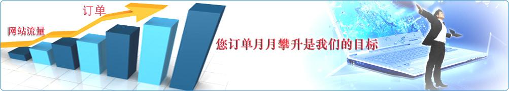 营销型网站建设,网站优化排名